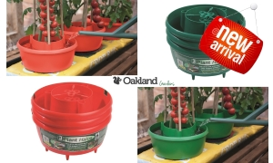 promo for plant halo watering rings